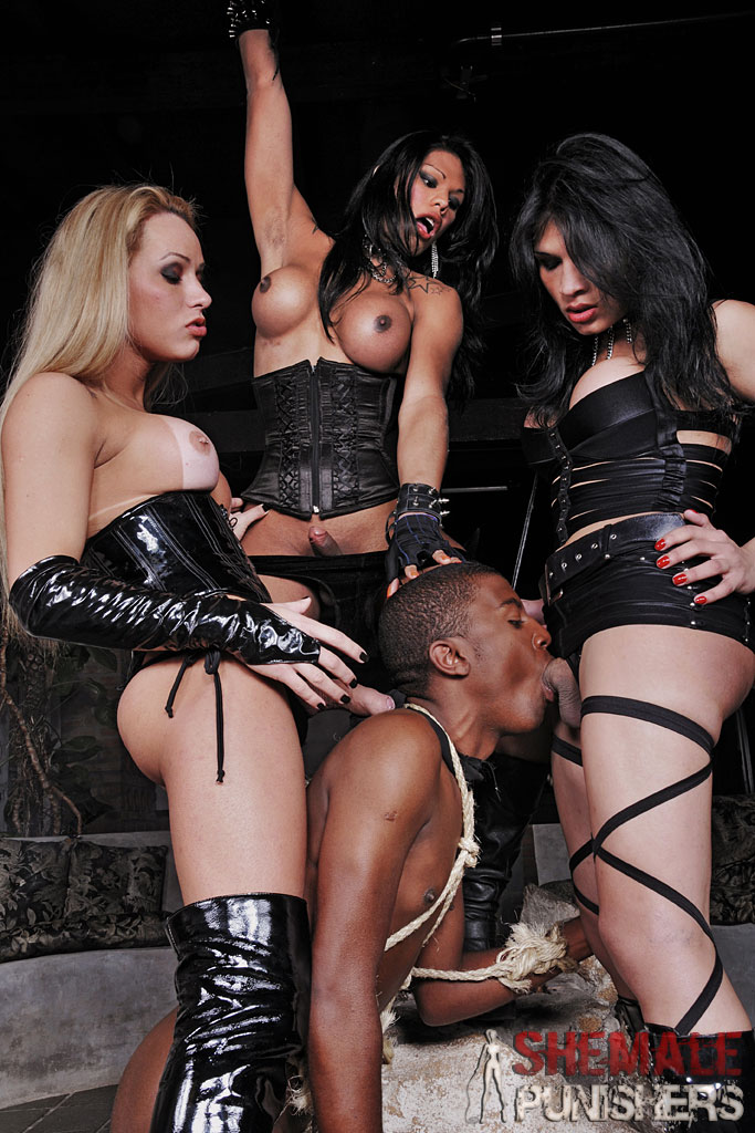 from Anakin shemale punishers free videos