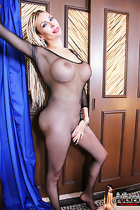 A Tranny with Huge Tits gets ready to suck the TSFUCKERs Cock