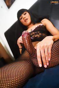 Brunette Ladyboy Shows Her Long Juicy Dick