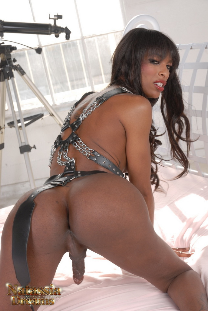 Ebony Black Shemale Cum
