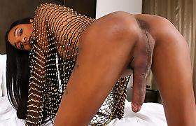 TS Dazia Cockdazian Having Fun With Her Huge Dick