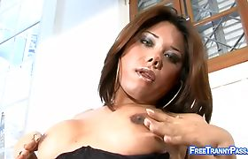 Busty Shemale Loves a Big Cock in Her Ass