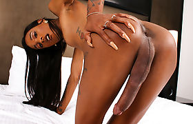Ebony Trans Beauty Dazia Cockdazian Masturbates