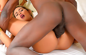 Shemale Bella Atrix Fucks Interracially