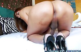 Asian shemale rubs ass