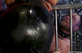 Busty shemale mistress anal bangs male