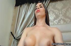 Sensual Big Tit Tranny Hooker