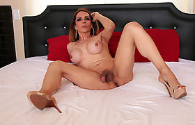 Superstar Tbabe Sofia Sanders enjoys Dalessandros cock