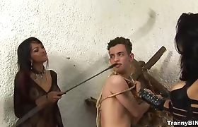 Tied slave assfucked by three lusty shemales