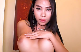 Big boobs Thai shemale bareback anal sex after a rimjob