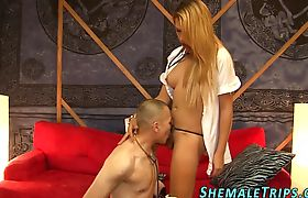 Anally banged shemale gets cock sucked