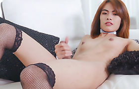 Small boobies ladyboy storkes her shecock on the couch