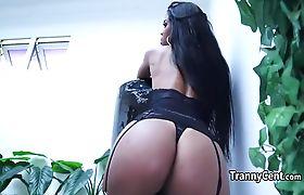 Black stockings ebony tgirl playing